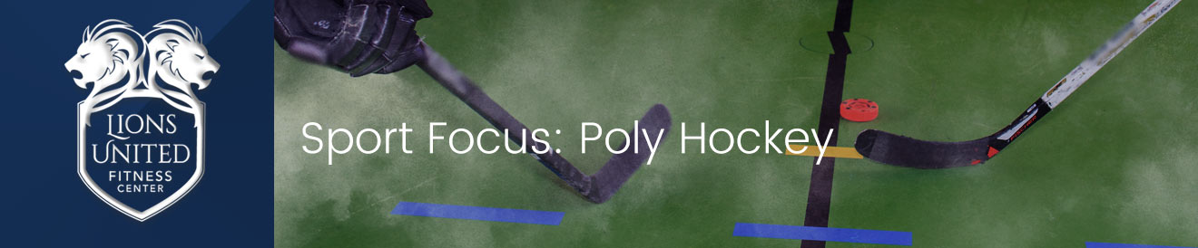 Poly (Floor) Hockey: A Great Way To Stay Active In The Winter